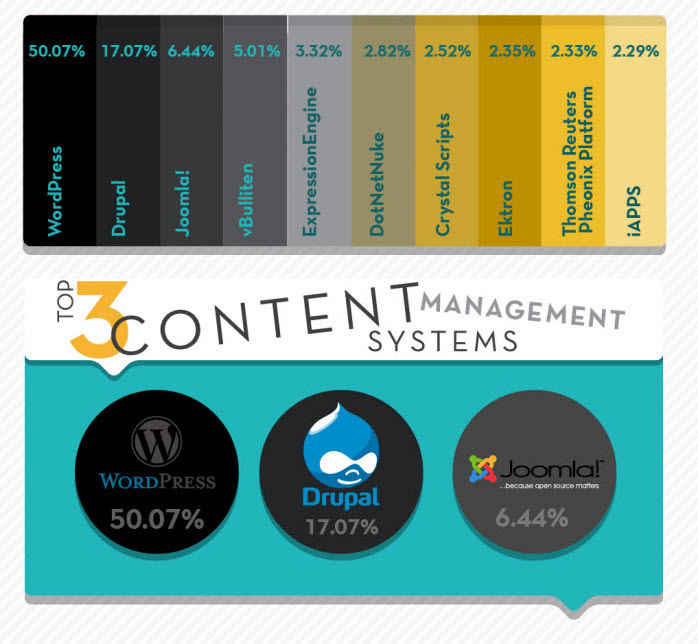 2013-top-cms-infographic